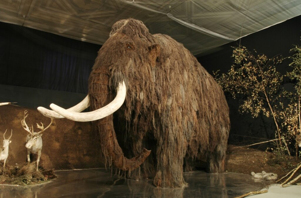 This startup is going to resurrect the mammoth through CRISPR